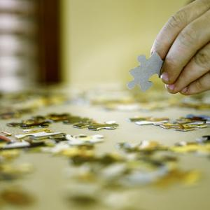 Putting Puzzles Together